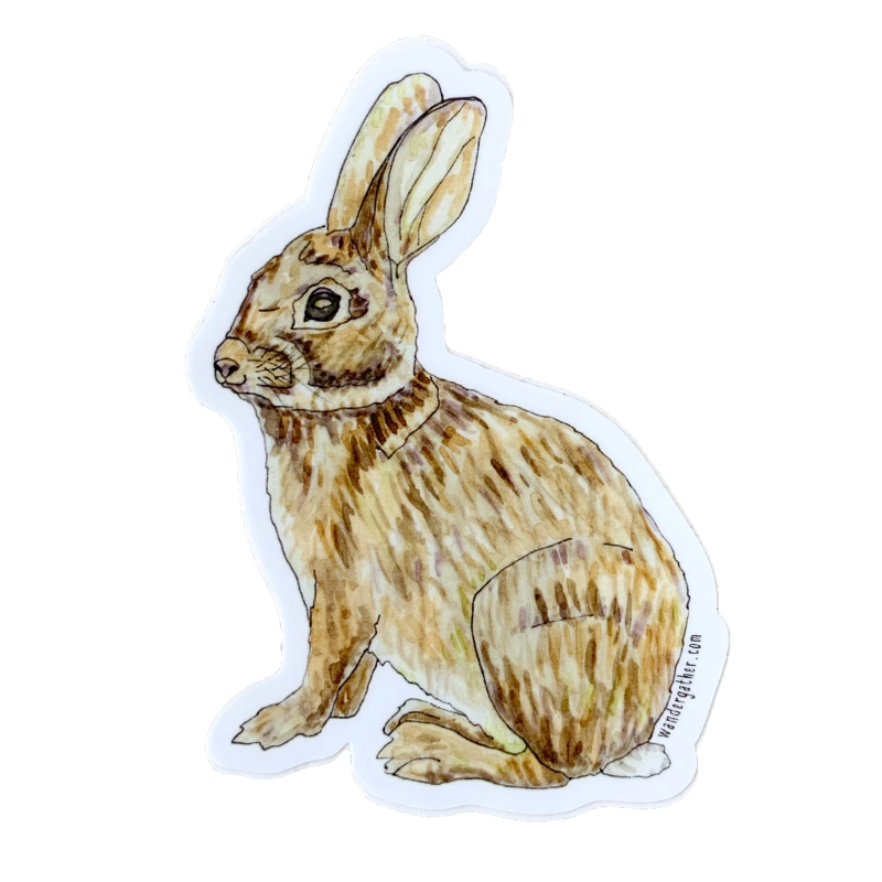 vinyl rabbit sticker watercolor illustration