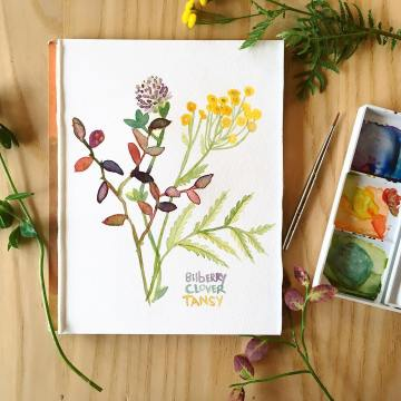 Botanical Watercolor Workshop 4