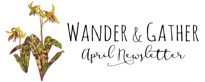 March newsletter header